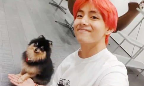 BTS(防弾少年団)V&愛犬ヨンタン