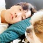 BTS J-HOPE&愛犬ミッキー