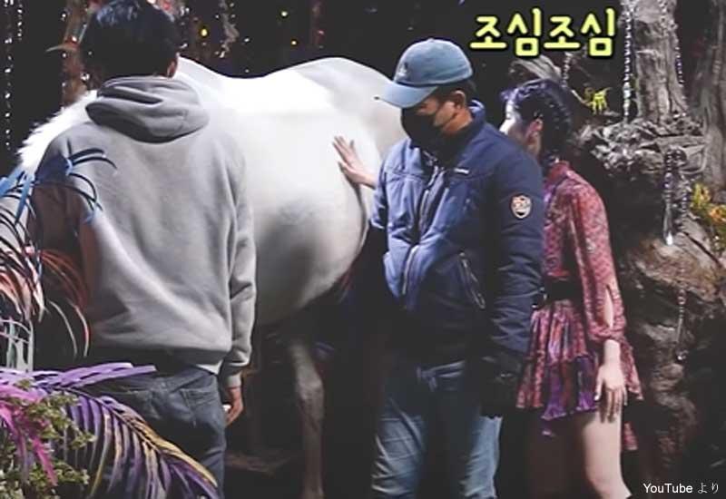 白い馬に触れることに成功したダヒョン(右)