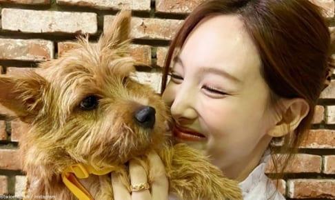TWICE ナヨンとモモの愛犬ブー